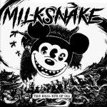 Milksnake, the real eye of god, hardcore, punk, italy